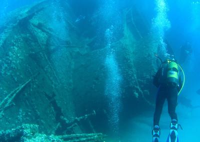 Diving Isola d'Elba