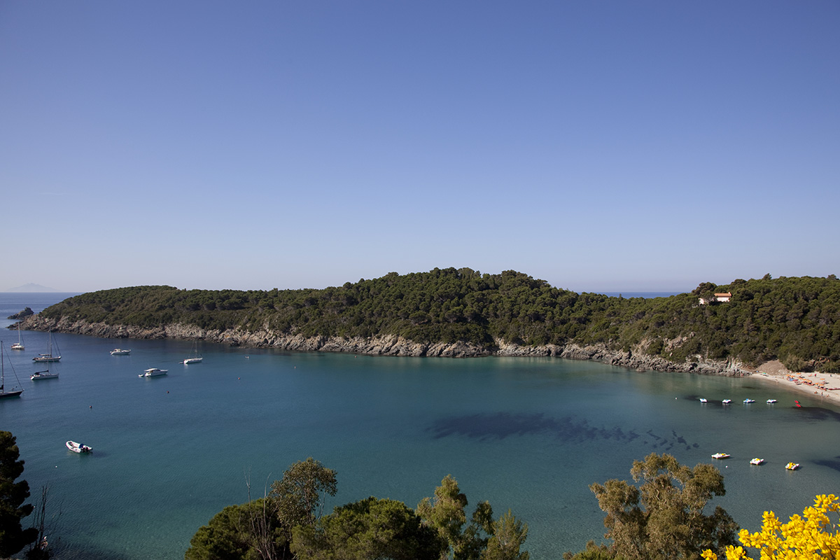 Elba Island - Bay and beach of Fetovaia