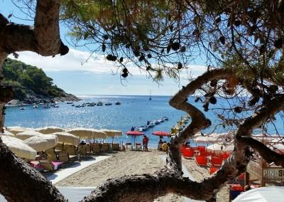 Terrazza panoramica sulla spiaggia di Fetovaia - Elba